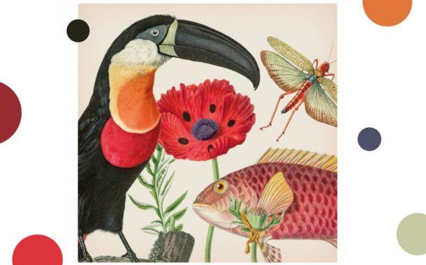 Rośliny i zwierzęta | wystawa