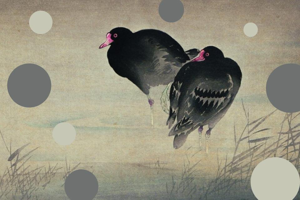 Ohara Koson. Drzeworyty japońskie z kolekcji Adriana Ciceu   wystawa